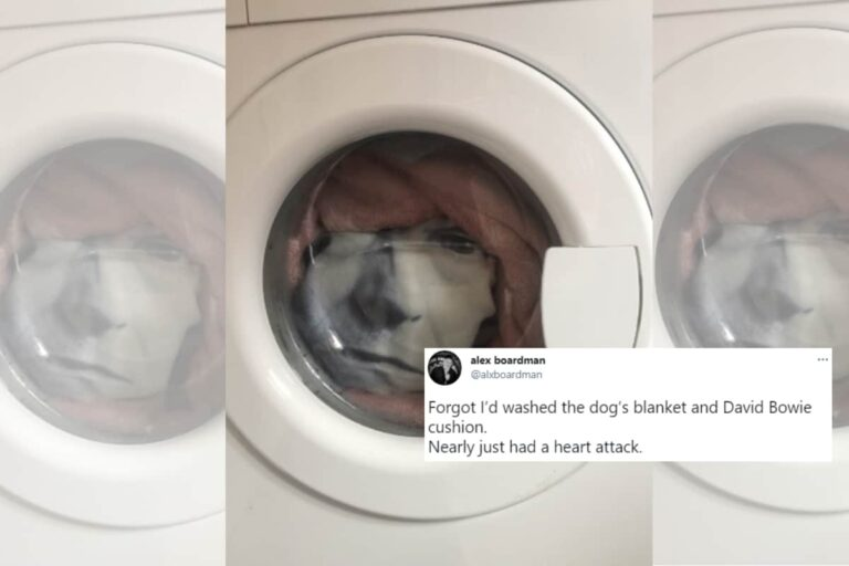 David Bowie's Face Emerging Inside a Washing Machine Will Keep You Up at Nights – News18