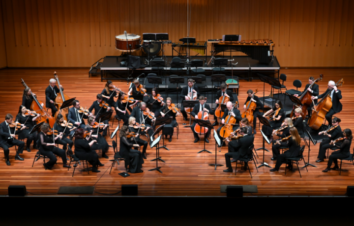 Are you raising a future Canberra Symphony Orchestra musician? This new program could be for them. – HerCanberra